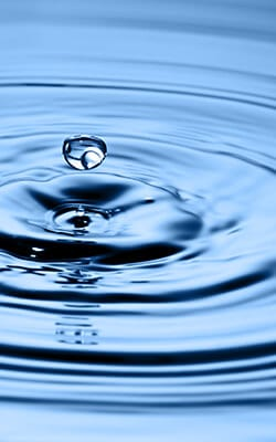 Case Study: The Ripple Effect of Leadership Coaching